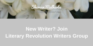 Literary Revolution Writers Group